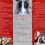 Secondhand Smoke 3 panel-back
