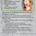 Fake Weed SPAN RC-front