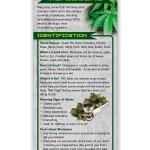 Marijuana-front