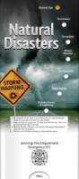 Natural Disasters 2082