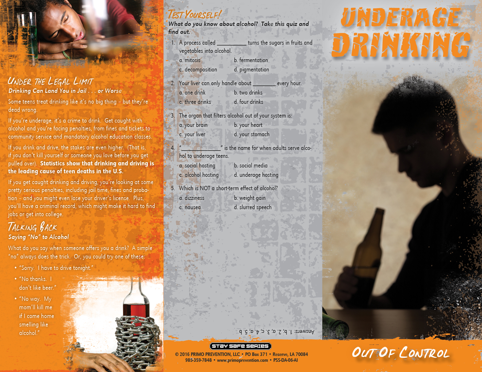 Drinking And Driving Prevention Brochures