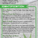 69-med-marijuana-rack-card-front