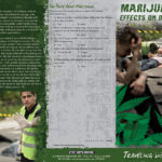 pss-da-49-marijuana-and-driving-back