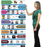 Drug-Identification-Chart-Retractable-Banner-STAND-GIRL