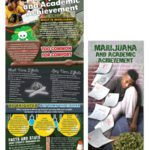 marijuana-academics-banner_pamphlet-web