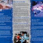 PSS-DA-19 Pregnancy & Drugs-back
