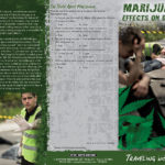 PSS-DA-49 Marijuana and Driving-FRONT