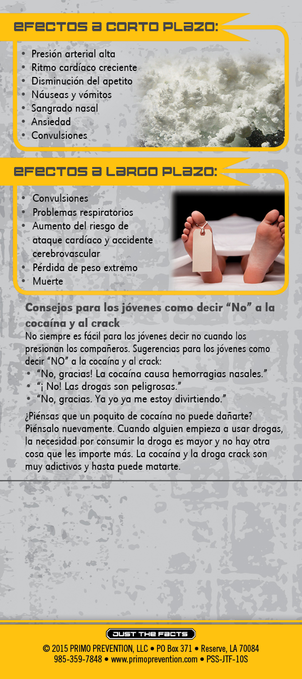 Spanish just the facts rack card cocaine crack for Interesting facts about crack