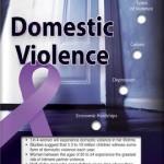 Domestic Violence 2151