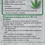 Marijuana SPAN RC-front