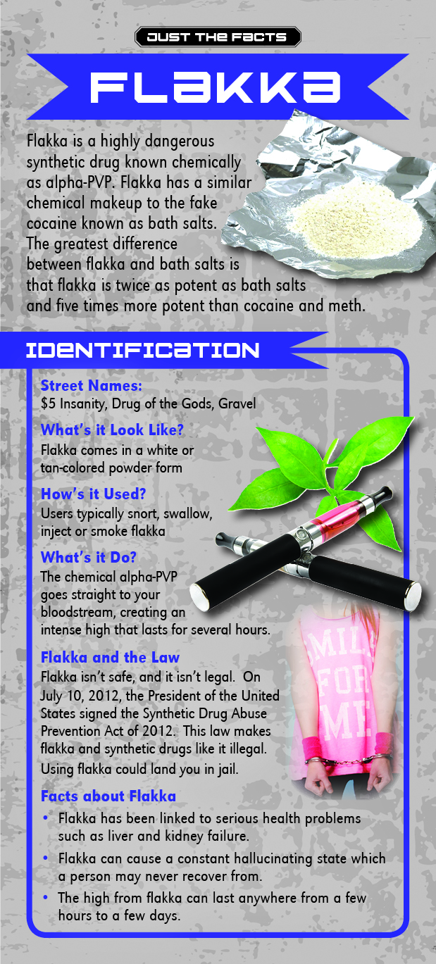 Just the Facts Rack Card: Flakka