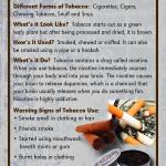 Tobacco Rack Cd Front