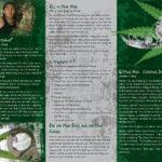pss-da-03-ai-marijuana-am-indian-back