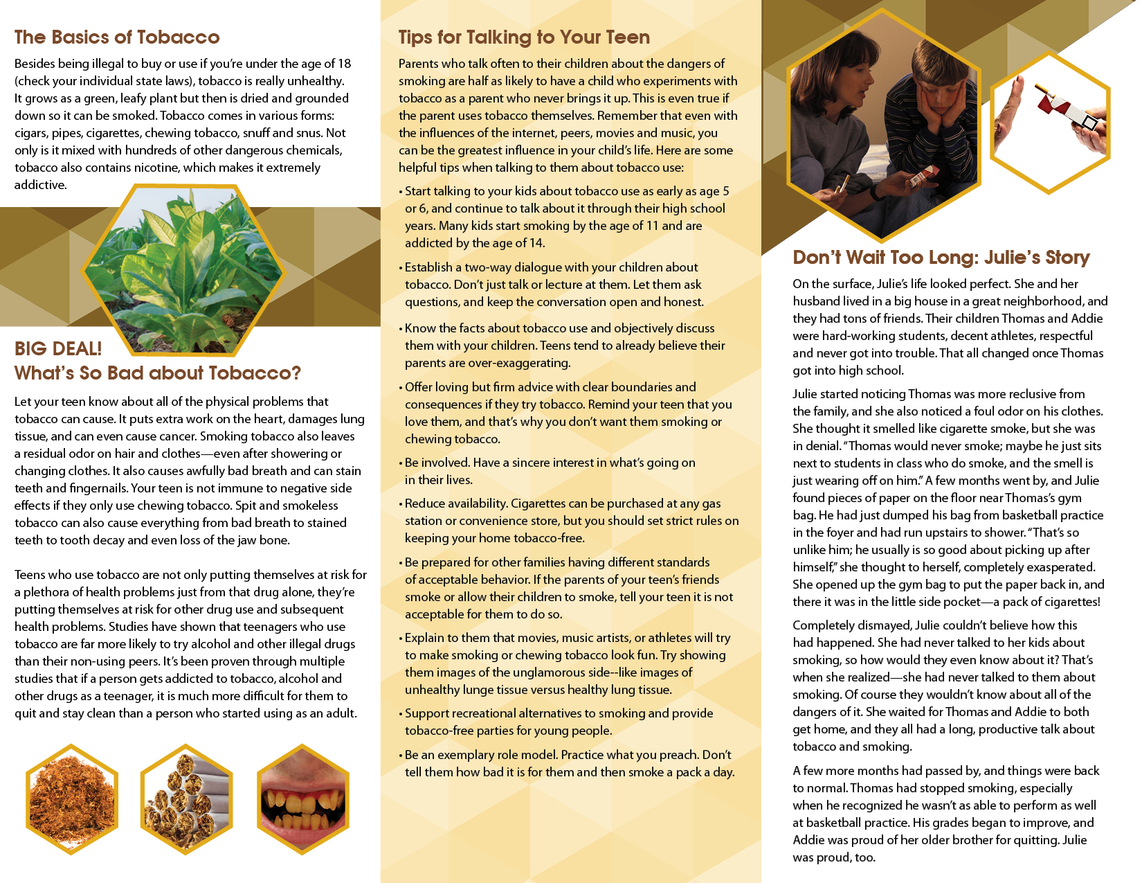 a description of cigarettes addiction and product dangers Product description menthol cigarettes pamphlet explains the dangers of menthol cigarettes the pamphlet identifies the physical and mental components of nicotine addiction and are encouraged to stick with quitting additional information.