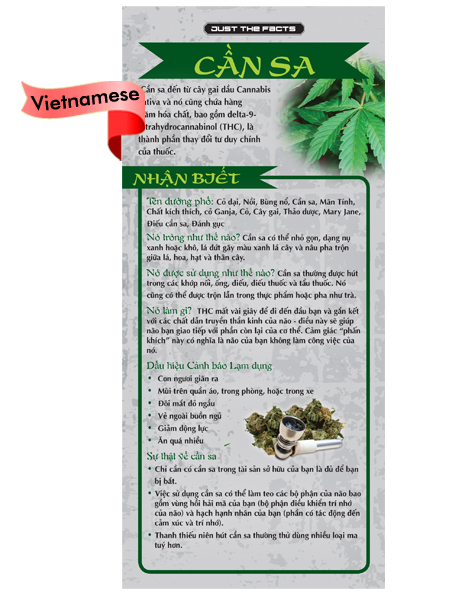 RACK-JTF-07V-Marijuana-Rack-Cd-VIETNAMESE-FLAG